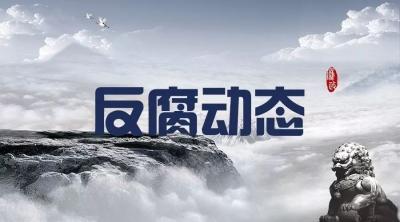 中國鹽業有限公司原黨委書記、董事長茆慶國接受審查調查