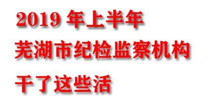 【圖說】蕪湖:上半年工作是這么干的