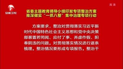 """【視頻】省委主題教育領導小組印發專項整治方案 推深做實""""一抓八整""""集中治理專項行動"""