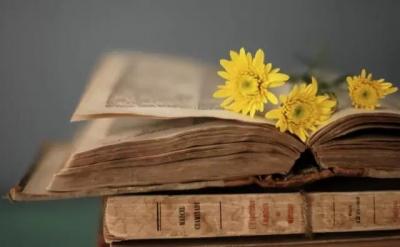 【读书】欲穷千里目 且读万卷书