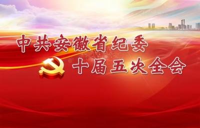 中共安徽省紀委十屆五次全會