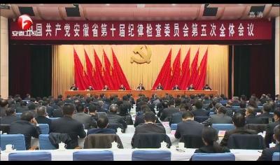 【视频】中国共产党安徽省第十届纪律检查委员会第五次全体会议决议