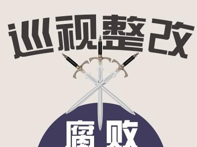 中共安徽省人民政府驻北京办事处党组关于巡视整改进展情况的通报
