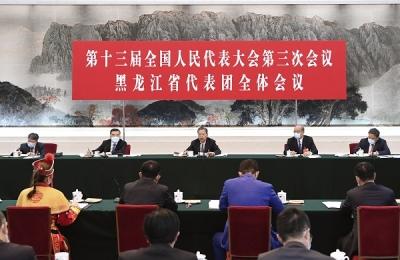 趙樂際參加黑龍江代表團審議