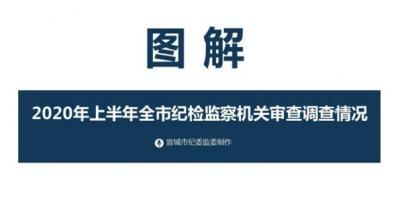 宣城:图解2020年上半年全市纪检监察机关审查调查情况