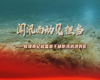【視頻】聞汛而動見擔當——蚌埠市紀檢監察干部防汛抗洪剪影