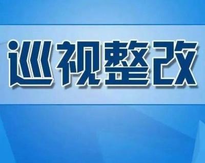 十九届中央第四轮巡视亮出整改成绩单