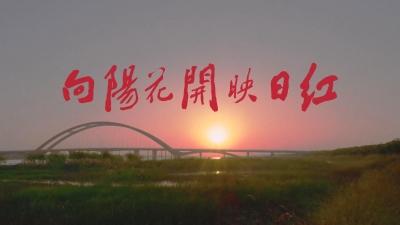 【微电影】向阳花开映日红