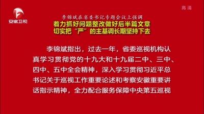 """【视频】李锦斌在省委书记专题会议上强调 着力抓好问题整改做好后半篇文章 切实把""""严""""的主基调长期坚持下去"""