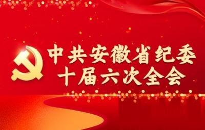 中共安徽省纪委十届六次全会