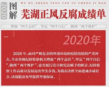 芜湖:图解2020年正风反腐成绩单