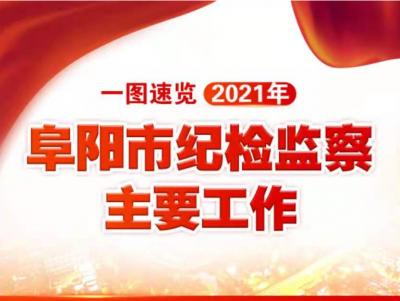 【图解】一图速览2021年阜阳市纪检监察主要工作