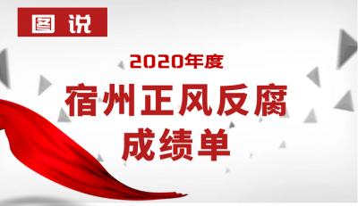 宿州:图说2020年度正风反腐成绩单