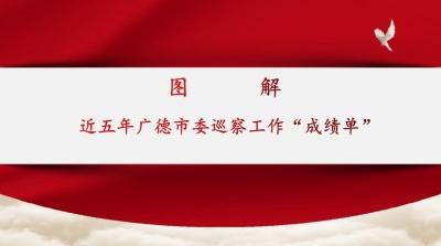 """广德:图解近五年来市委巡察工作""""成绩单"""""""