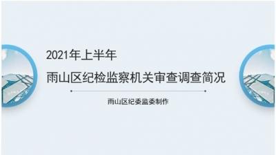 2021年上半年马鞍山雨山区纪检监察机关审查调查简况图解