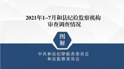 2021年1-7月和县纪检监察机构审查调查情况图解