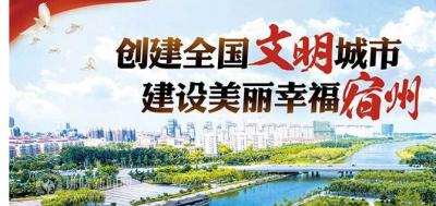 """提升城镇功能改善人居环境 宿州市""""两治三改""""火热进行中"""