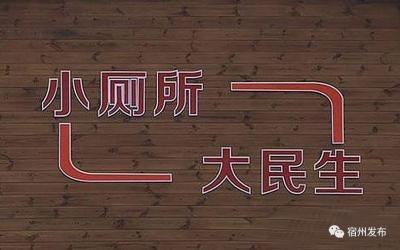 """埇桥区努力补齐农村环境短板 推进农村""""厕所革命"""""""