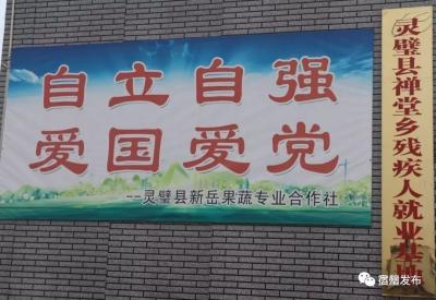 """灵璧县禅堂乡有位""""油桃爷爷"""",他的事迹可不一般"""