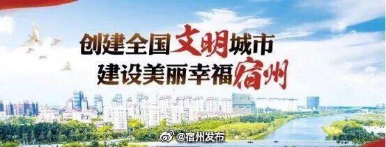 赵琳调研社区文明创建