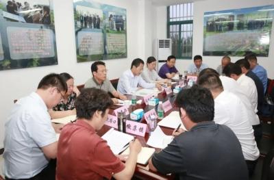 张志强调研城区路网建设以及石龙湖国家湿地公园