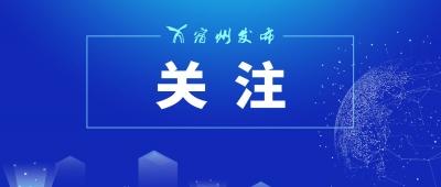 """融入长三角一体化发展 对接淮海经济区协同发展——埇桥区奋力打造""""三区一基地"""""""