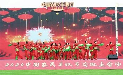 """2020年""""中国农民丰收节""""安徽省主会场活动在泗县开幕"""