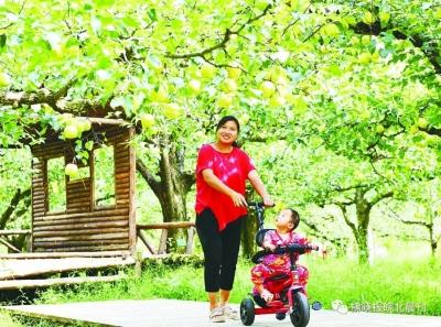 砀山梨树王景区 入选省级休闲农业和乡村旅游 示范园