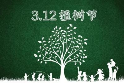 植树节| 新区春风十里,播种一片绿意~