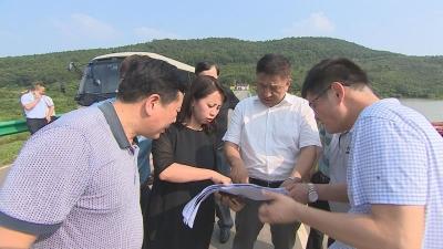 陈永红调研文旅重点项目