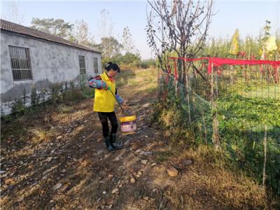 香泉镇:自强女性奋力奔小康